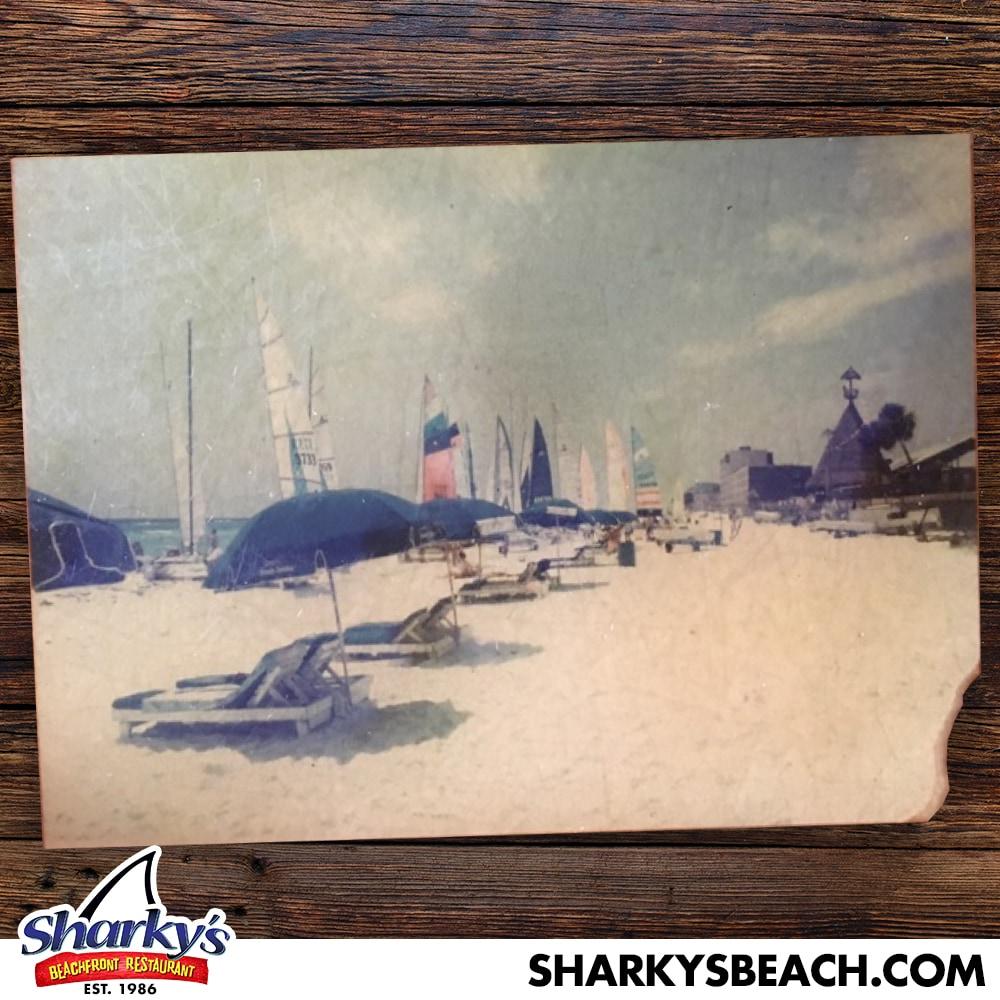 Regatta on the beach behind Sharky's