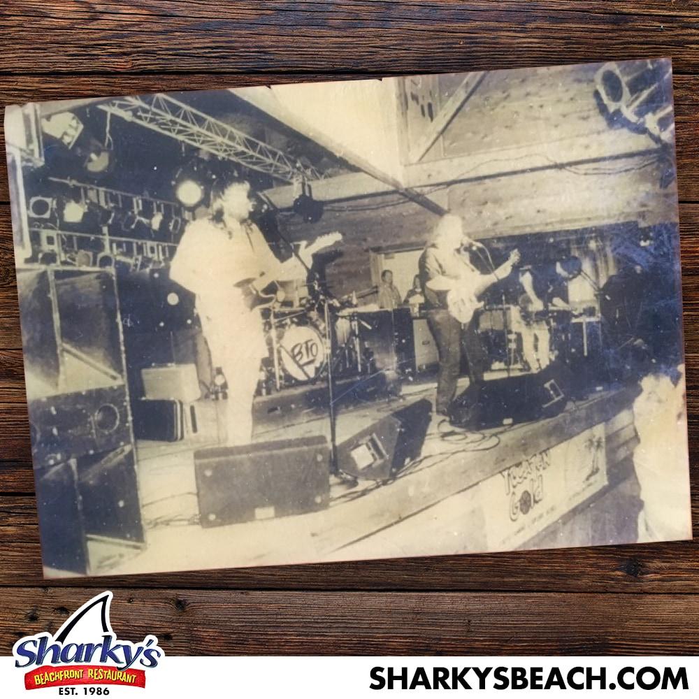 Band BTO Bachman Turner Overdrive playing LIVE at Sharky's