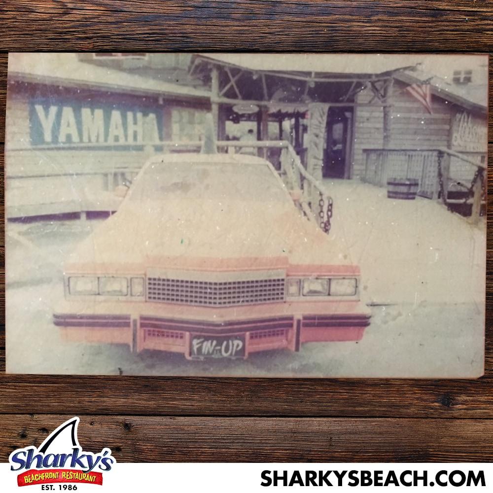Sharky's Sharkmoblie